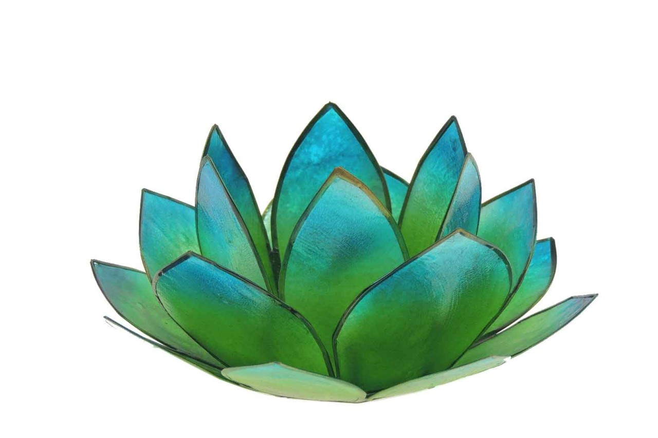Windlicht Lotus grün/blau Capiz Muscheln 13x5,5cm - Handwerk